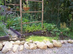 sedum garden